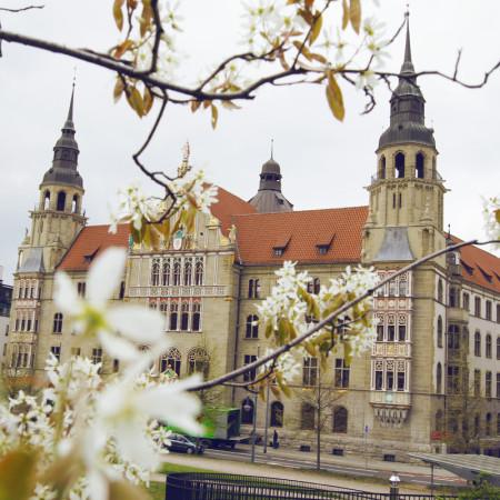 Landgericht mit blühenden Zweigen im Vordergrund