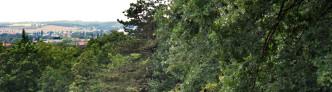 Aussicht von den Galgenbergen (Halle)