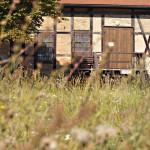 Halloren- und Salinemuseum Fachwerkbau