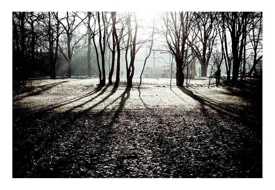 Kalenderbild 2012 von Tobias Jeschke: Baumreihe und Spielplatz im Gegenlicht
