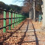 Grünes Geländer entlang der Saalepromenade