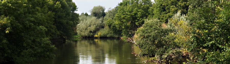 Rabeninsel - Blick auf Fluss